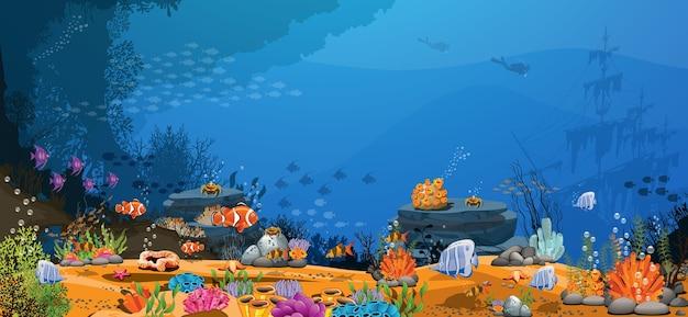 Гора, песок, рыба морская жизнь и океан. морская фотография