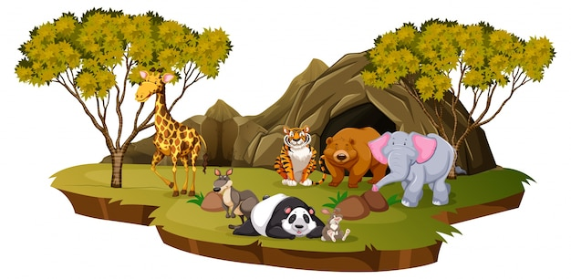 多くの動物がいる山の風景