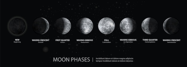 Movements of the moon phases realistic
