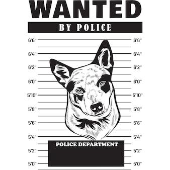 Mugshot of australian cattle dog holding banner behind bars