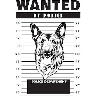 Mugshot of belgian malinios dog holding banner behind bars