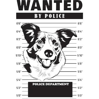 Mugshot of border collie dog holding banner behind bars