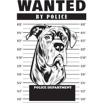 Mugshot of cane corso dog holding banner behind bars