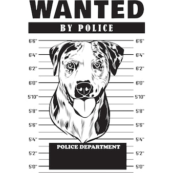 Mugshot of catahoula dog holding banner behind bars