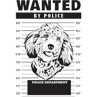 Mugshot of cockapoo dog holding banner behind bars