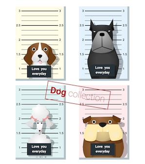 Mugshot of  cute dogs