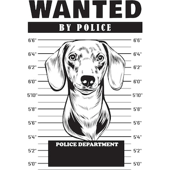 Mugshot of dachshund dog holding banner behind bars