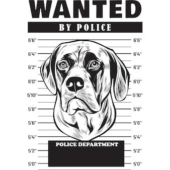 Mugshot of english mastiff dog holding banner behind bars