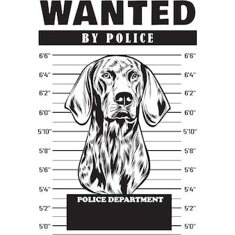 Mugshot of german shorthair pointer dog holding banner behind bars