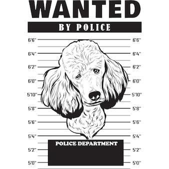 Mugshot of poodle dog holding banner behind bars