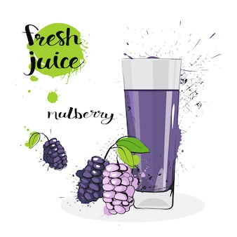 Mulberry juice fresh hand drawn watercolor fruits and glass on white background