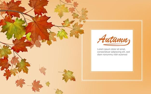 秋の明るく暖かい背景に落ちる多色のカエデの葉