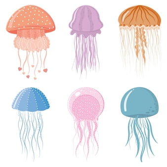 Multicolored isolated sea jellyfish on a white background.