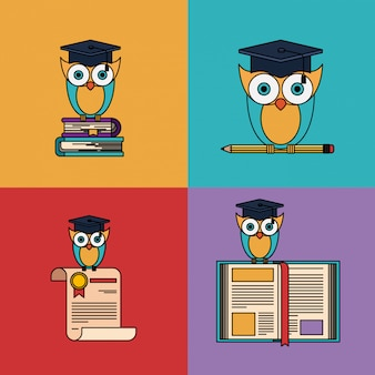 Multicolored set with owl with school and graduation elements