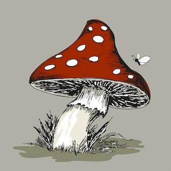 Mushroom amanita with grass