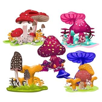 Mushroom color vector template