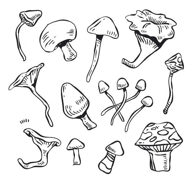 Грибной каракули вектор. грибной болван