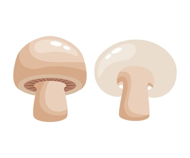 버섯 그리기 흰색 배경 위에 절연입니다. 벡터 일러스트 레이 션