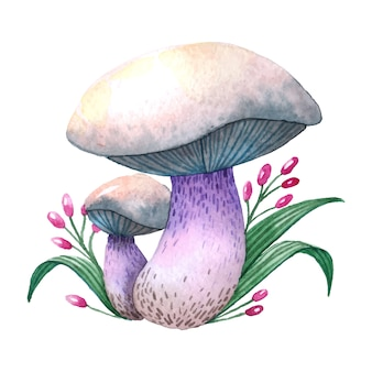 Mushroom hand drawn illustration.
