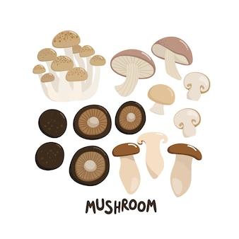 Mushroom include shiitake