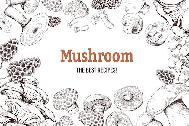 버섯 스케치 배경