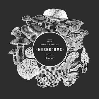 Mushroom template. hand drawn food illustration on chalk board.