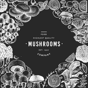 Mushroom template. hand drawn food illustration on chalk board.