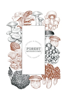 Mushroom template. hand drawn food illustration.