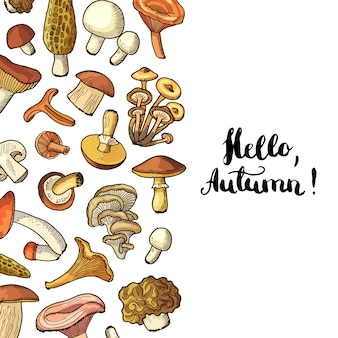 Mushrooms background with lettering hello autumn