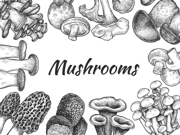 きのこ。手描きのさまざまなキノコ有機ベジタリアン製品食品、メニューのスケッチデザイン、ラベルまたはパッケージ、ベクトルの背景。食用キノコアミガサタケ、トリュフ、シャンピニオン、トランペット