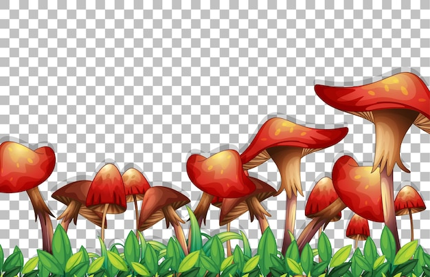 Mushrooms and leaves on transparent background