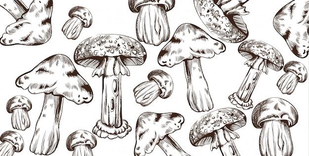 Mushrooms line art pattern. autumn fall veggies s