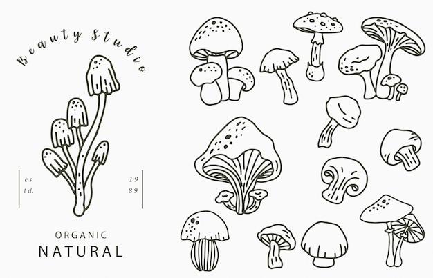 しめじ、しいたけのmushroonコレクションのロゴ。アイコン、ロゴ、ステッカー、印刷可能なタトゥーのベクトル図