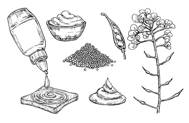 Горчичный соус в миске. ручной обращается пищевой ингредиент. ботаническая цветочная ветка и куча семян, приправы в бутылке.