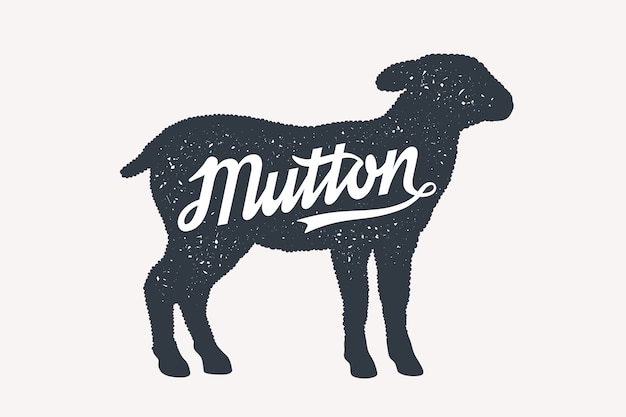 Mutton, sheep, lamb, lettering.