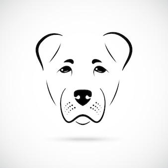 Морда собаки алабай на белом фоне