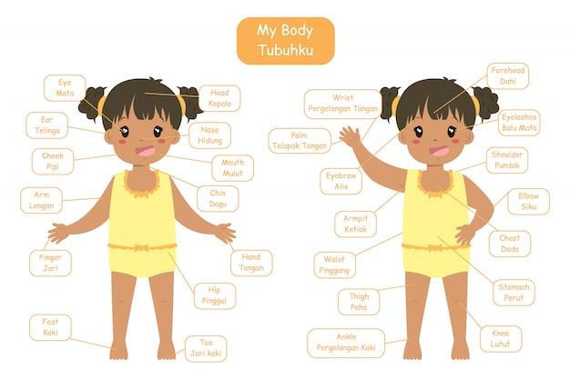 「私の体の部分」の子供向けのバイリンガル語彙デザイン。黄色い下着姿でかわいいアフリカ系アメリカ人の女の子。