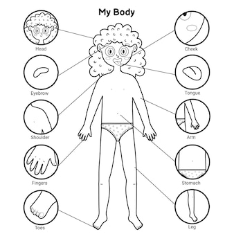 My body parts black and white educational poster with a girl. learning human body for school and preschool kids. coloring page template.