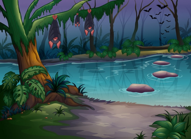 Mysterious woods and a river