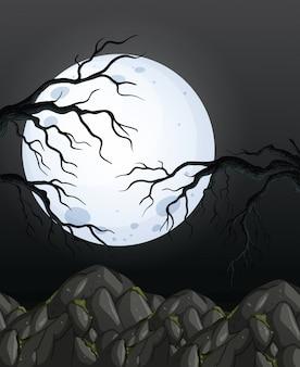 미스터리 어두운 밤 숲 배경
