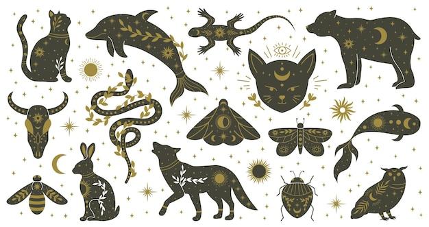 Мистик бохо колдовство рисованной животных и мотыльков насекомых. колдовство волшебный дельфин, медведь, ящерица, змея и моль векторные иллюстрации набор. мифологические животные дикой природы. дикая рептилия духовности