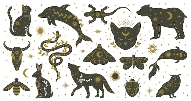 Mystic boho witchcraft hand drawn animals and moths insects. witchcraft magical dolphin, bear, lizard, snake and moth vector illustration set. mythological wildlife animals. wild spirituality reptile
