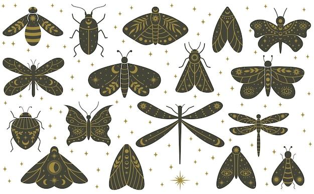 Мистическая бохо бабочка бабочка стрекоза рисованной насекомых. набор векторных иллюстраций волшебной стрекозы, бабочки, жуков и моли колдовства. колдовство мистических диких насекомых