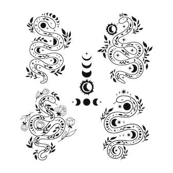 신비로운 뱀은 라인 아트 스타일로 묶입니다. 꽃 보호 및 점성술 미니멀리스트 요소입니다.