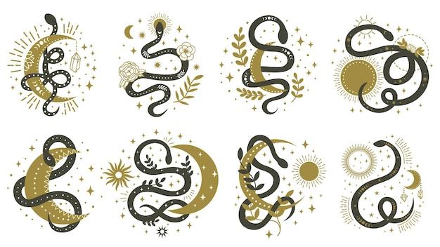 신비로운 뱀. 꿈틀 거리는 뱀 그림 세트와 꽃 boho 및 점성술 미니멀 요소