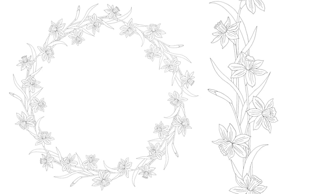 Narcissus or daffodils. hand drawn   illustration. round floral frame. line art.
