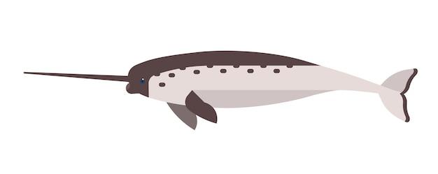 Narwal 평면 벡터 일러스트 레이 션. 추상 바다 유니콘 흰색 배경에 고립입니다. 미니멀리스트 일각고래 그림. monodon monoceros 클립 아트. 고래 포유류, 긴 뿔을 가진 수중 생물.