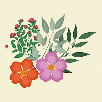 Nasturtiumは装飾的な葉