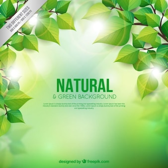 Natural and green background