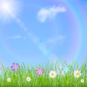 Natural background with blue sky, sun, clouds, rainbow, green grass and multicolored flowers